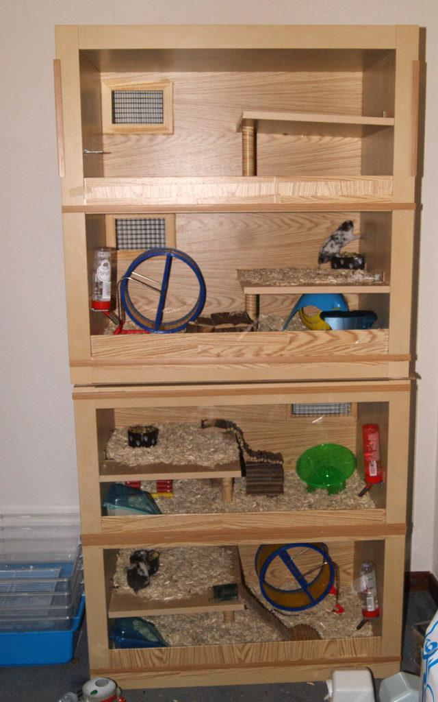 Idea of a wooden Gerbil Housing Homemade