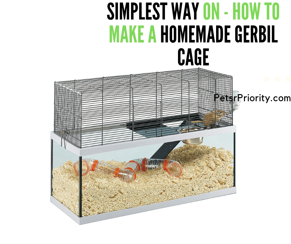 Simplest Way On – How to Make a Homemade Gerbil Cage
