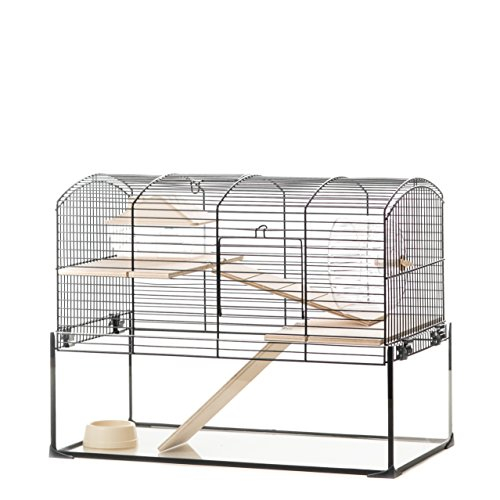 What is the best cage for gerbils in the market