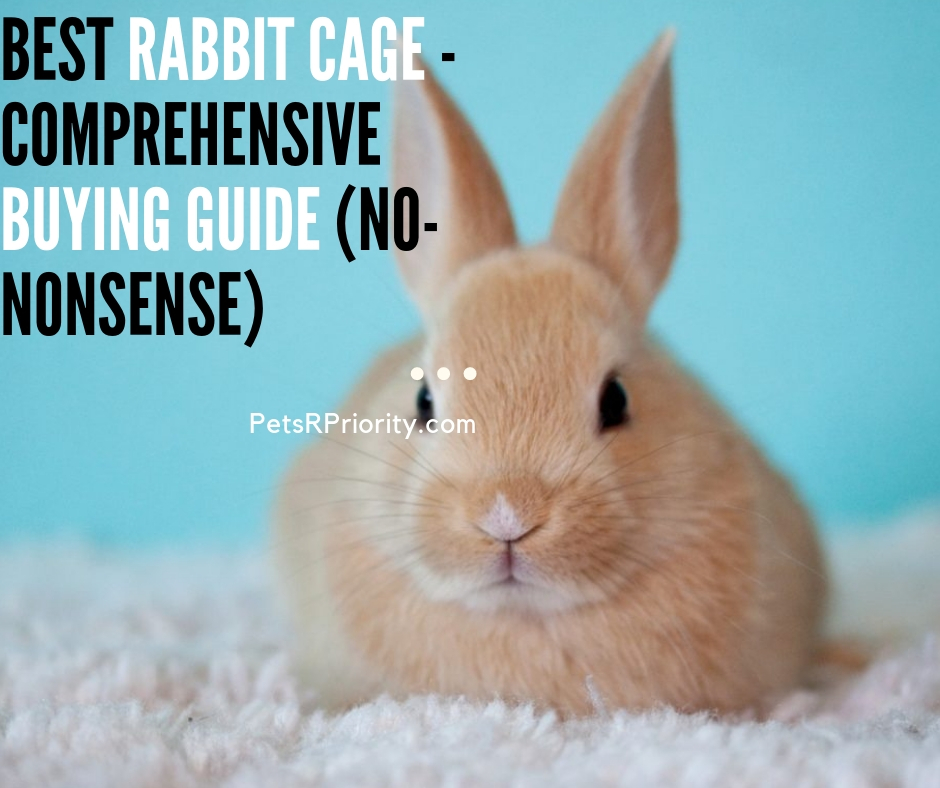 Best Rabbit Cage - Comprehensive Buying Guide (No-Nonsense)