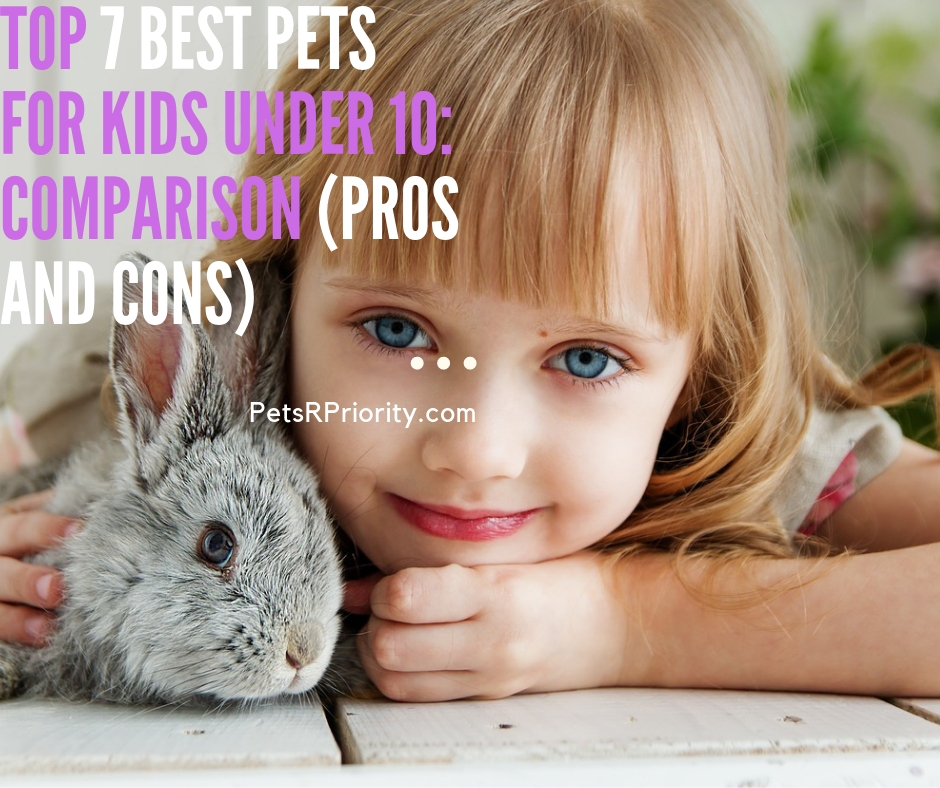 Top 7 best pets for kids under 10 Comparison (Pros and Cons)