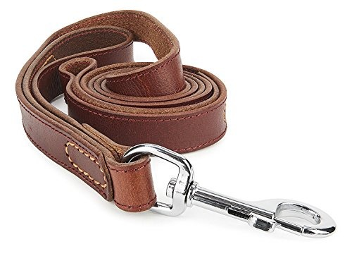 leather dogs leash