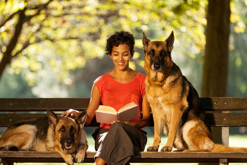 What should you consider when hiring a pet sitter?