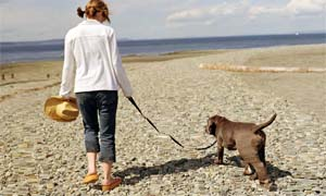 walk-with-dog-4-300x180