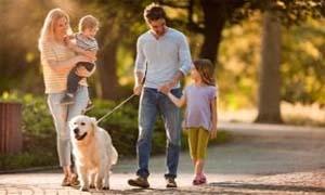 walk-with-dog-5-300x180