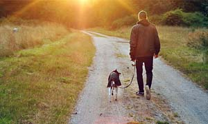 walk-with-dog-3-300x180