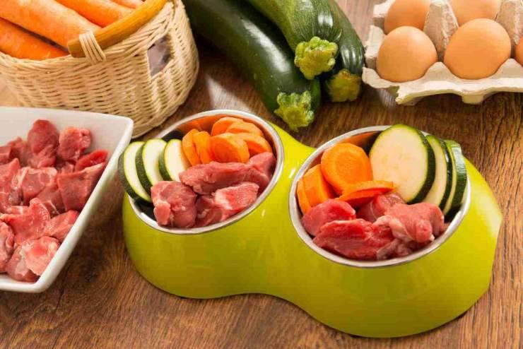 vegetarian vegan diet