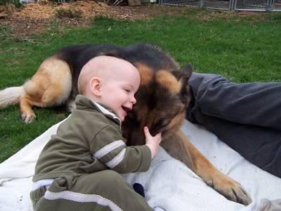 children dogs 7