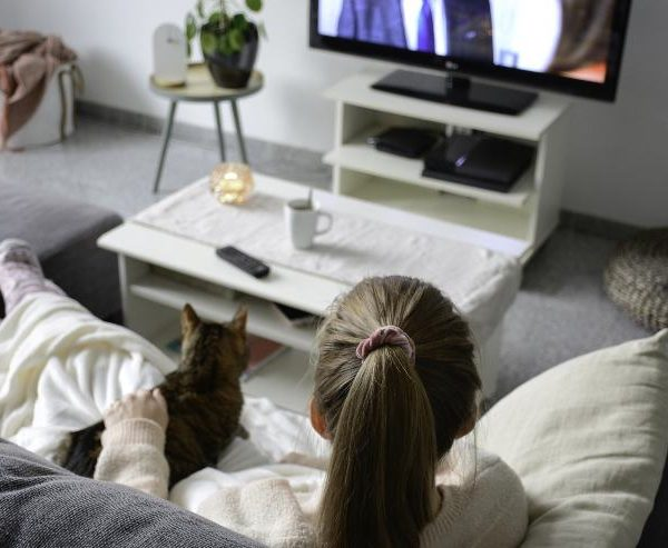 Can Cats Watch TV? What the experts say