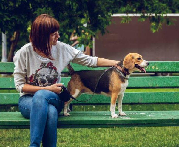 Is the retractable leash dangerous for us and our dogs? Let's find out