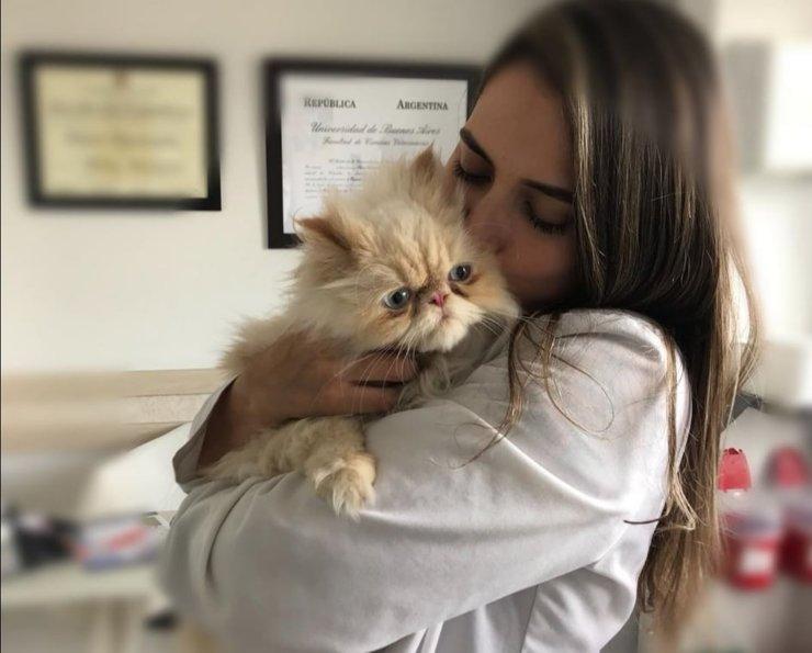 Specialist veterinarian