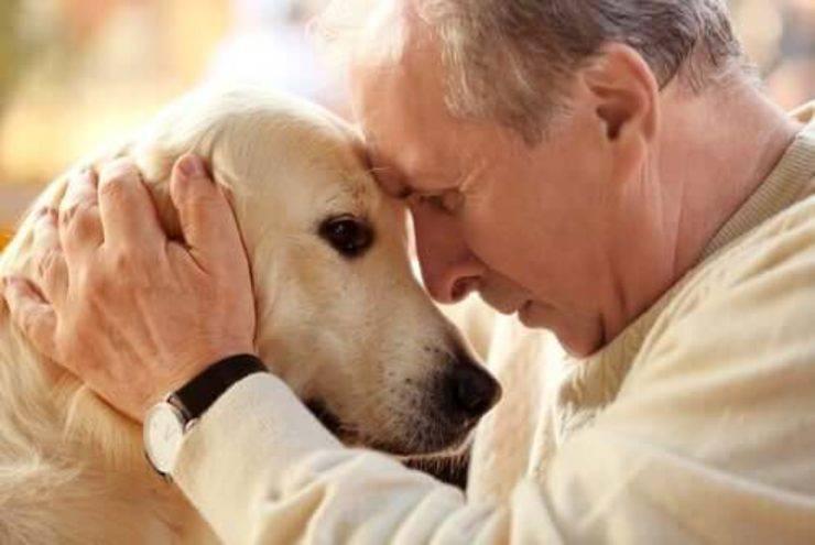older people entrust animals