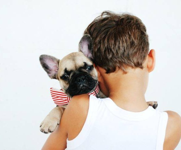 How to be a good dog owner – The Greatest Tips to Follow