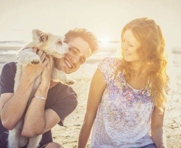 How to repair relationship with dog – mistakes to avoid
