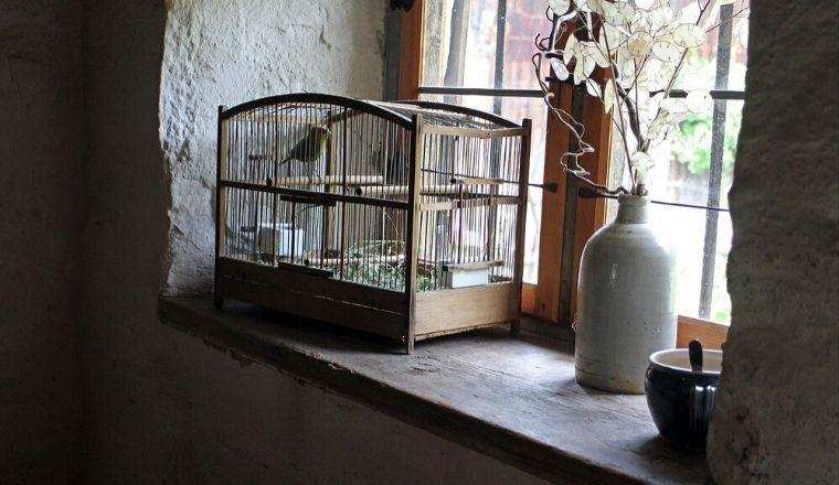 Gabbia per uccelli sul davanzale